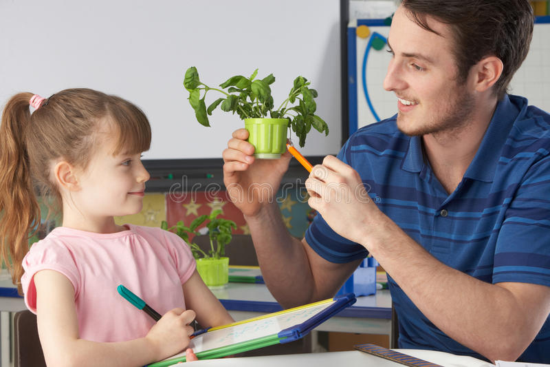 Download Κορίτσι που μαθαίνει για τα φυτά με το δάσκαλο Στοκ Εικόνα - εικόνα από βασικών, σημειώσεις: 22777411