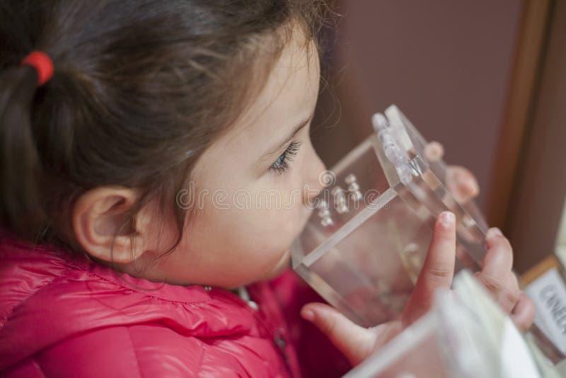 Κορίτσι που μυρίζει τις ασιατικές μυρωδιές στο μουσείο στοκ εικόνα