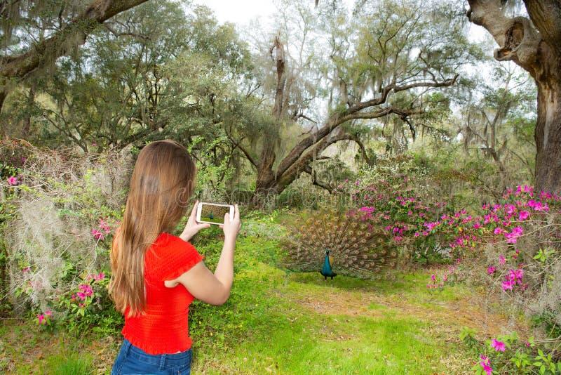 Κορίτσι που παίρνει τις φωτογραφίες με το τηλέφωνό της του πουλιού στον όμορφο ανθίζοντας κήπο στοκ φωτογραφία με δικαίωμα ελεύθερης χρήσης