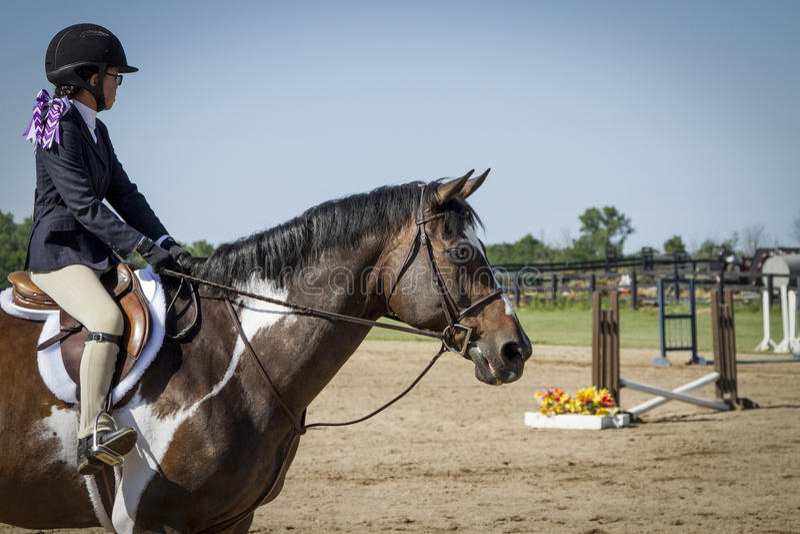 Κορίτσι που παρουσιάζει άλογο χρωμάτων στοκ φωτογραφίες