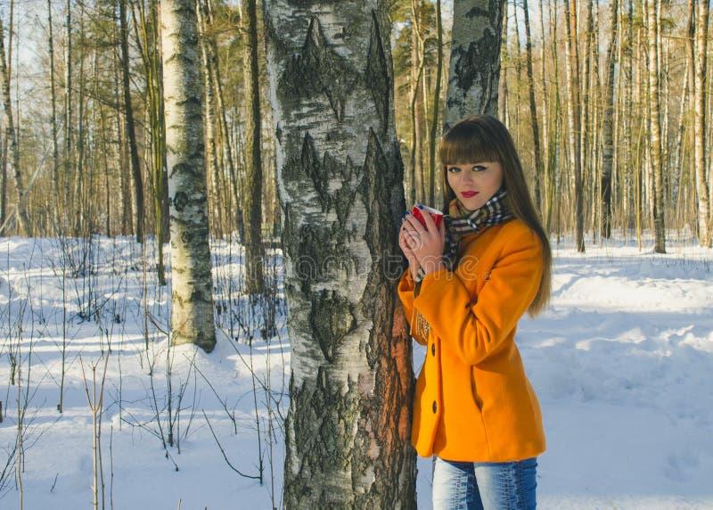 Κορίτσι που περπατά στο δάσος στο χειμερινό γ καφέ στοκ φωτογραφία με δικαίωμα ελεύθερης χρήσης