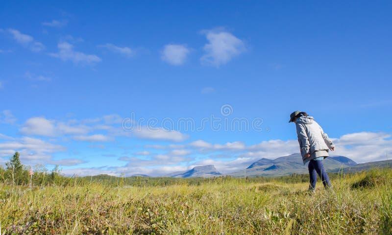 Κορίτσι που περπατά στο τοπίο βουνών στη Σουηδία και έναν οδοιπόρο, εθνικό πάρκο Abisko στο Βορρά της Σουηδίας (βόρεια Σκανδιναβί στοκ εικόνες