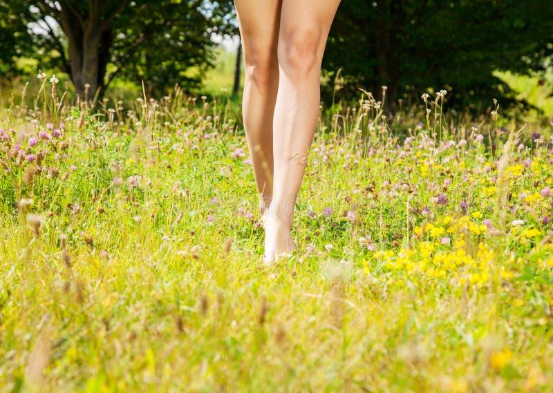 Κορίτσι που πηγαίνει χωρίς παπούτσια στη χλόη στοκ εικόνα