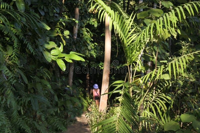 Κορίτσι που στην εθνική Αυστραλία Βόρεια Περιοχών πάρκων Litchfield στοκ φωτογραφία με δικαίωμα ελεύθερης χρήσης