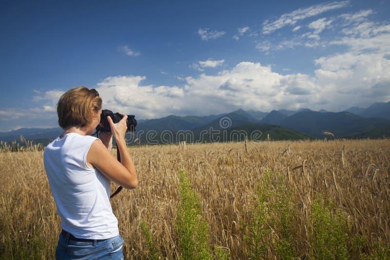 Κορίτσι που φωτογραφίζει τον ώριμο τομέα σίτου στις φωτεινές ακτίνες ήλιων στοκ φωτογραφίες με δικαίωμα ελεύθερης χρήσης