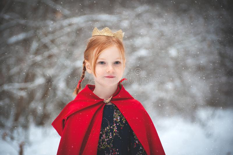 Κορίτσι σε ένα κόκκινο παλτό με μια χρυσή κορώνα στοκ εικόνα με δικαίωμα ελεύθερης χρήσης