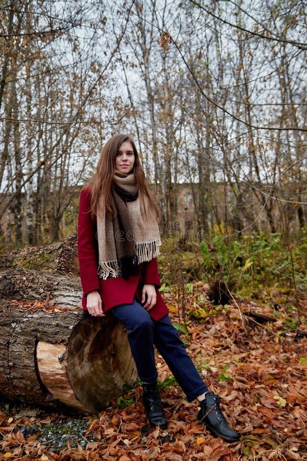 Κορίτσι σε ένα κόκκινο παλτό στο πάρκο στα τέλη του φθινοπώρου στοκ εικόνα