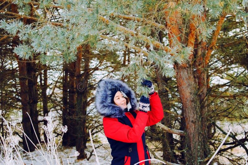 Κορίτσι σε ένα πάρκο κοντά σε ένα δέντρο πεύκων το χειμώνα στοκ φωτογραφία με δικαίωμα ελεύθερης χρήσης