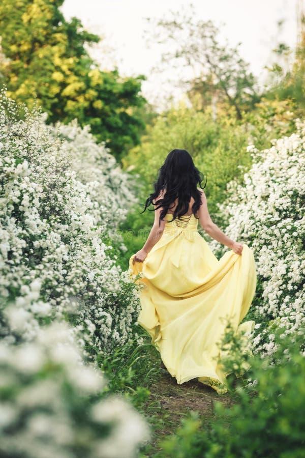 Κορίτσι στα κίτρινα τρεξίματα φορεμάτων κατά μήκος της πορείας μεταξύ των ανθίζοντας θάμνων του spiraea στοκ εικόνες