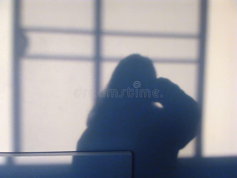 Κορίτσι στη σκιά στοκ εικόνα με δικαίωμα ελεύθερης χρήσης