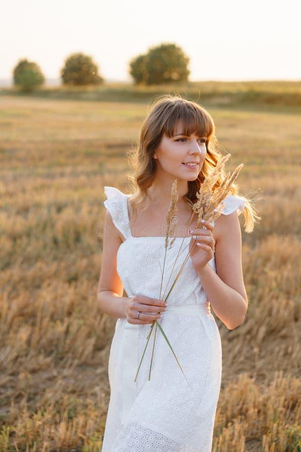 Κορίτσι στο άσπρο φόρεμα με spikelets Γυναίκα στον τομέα, θέση για το κείμενο Ακίδα και κορίτσι στον τομέα Πρόσφατο καλοκαίρι και στοκ εικόνες με δικαίωμα ελεύθερης χρήσης