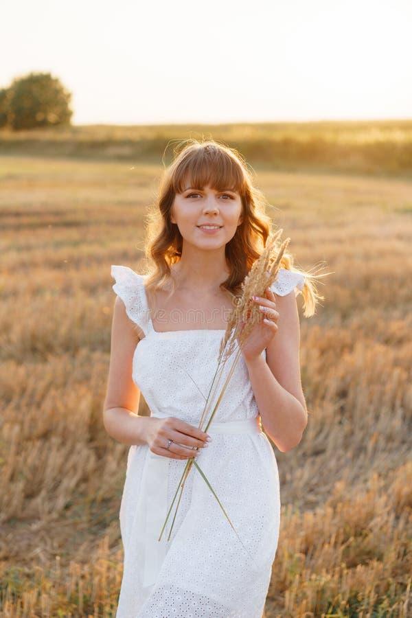 Κορίτσι στο άσπρο φόρεμα με spikelets Γυναίκα στον τομέα, θέση για το κείμενο Ακίδα και κορίτσι στον τομέα Πρόσφατο καλοκαίρι και στοκ φωτογραφίες