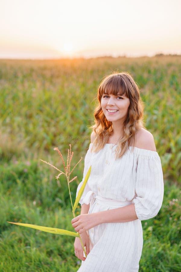 Κορίτσι στο άσπρο φόρεμα με spikelets Γυναίκα cornfield, θέση για το κείμενο Ακίδα και κορίτσι στον τομέα Πρόσφατο καλοκαίρι και  στοκ φωτογραφία με δικαίωμα ελεύθερης χρήσης