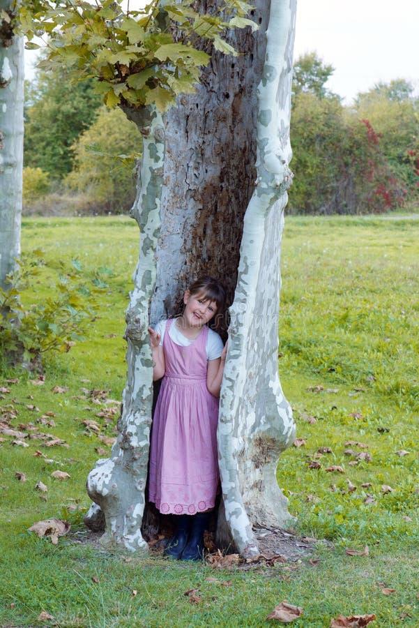 Κορίτσι στο δέντρο στοκ εικόνα με δικαίωμα ελεύθερης χρήσης