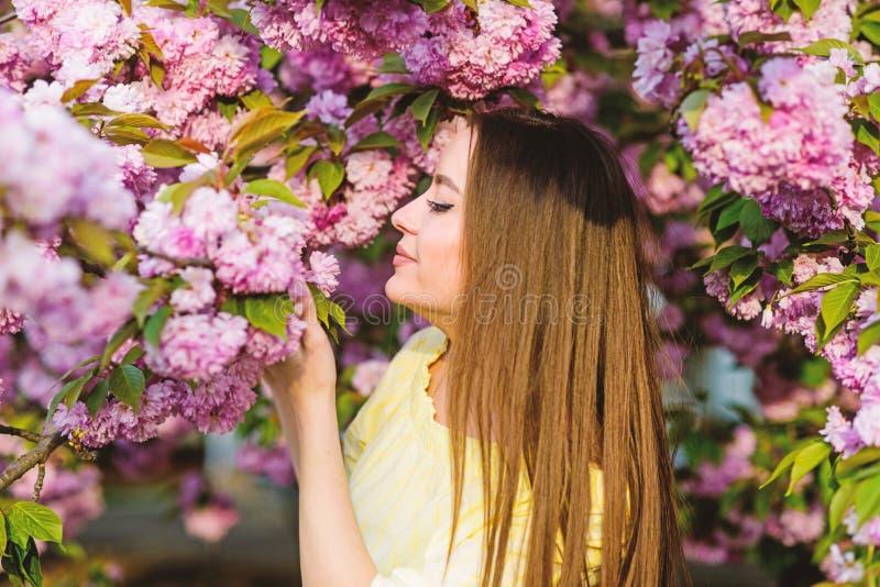 Κορίτσι στο λουλούδι κερασιών Άνθιση δέντρων Sakura μυρωδιά ανθών, αλλεργία skincare και SPA Φυσικά καλλυντικά για το δέρμα στοκ εικόνες με δικαίωμα ελεύθερης χρήσης