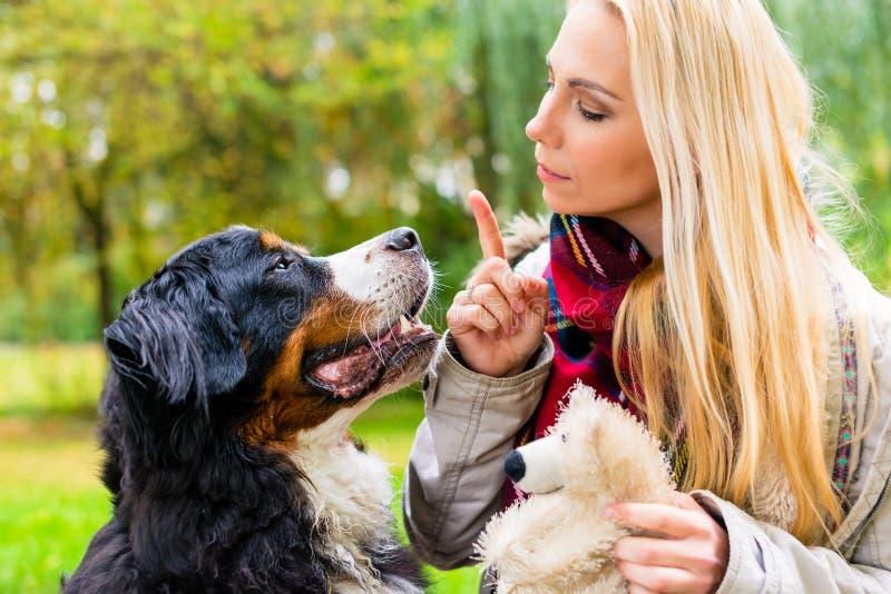 Κορίτσι στο πάρκο φθινοπώρου που εκπαιδεύει το σκυλί της στην υπακοή στοκ φωτογραφίες