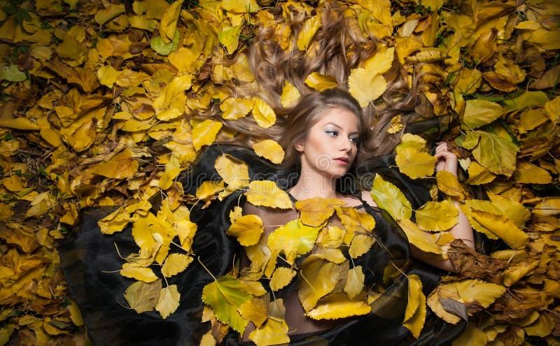Κορίτσι της Νίκαιας που καλύπτεται με τα φθινοπωρινά φύλλα Νέα γυναίκα που καθορίζει στο έδαφος που καλύπτεται από το φύλλωμα πτώ στοκ φωτογραφία
