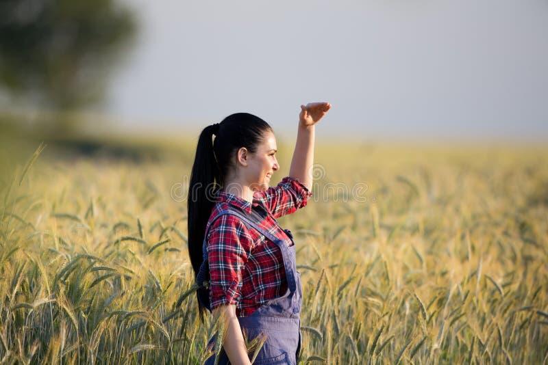 Κορίτσι της Farmer στον τομέα σίτου στοκ φωτογραφία