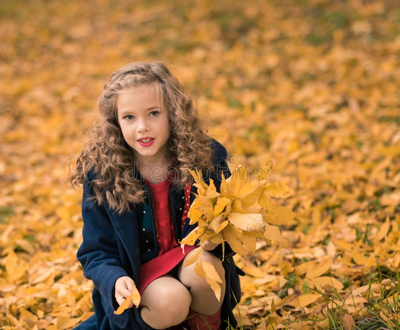 Κορίτσι φθινοπώρου ευχαριστημένο από τη ζωηρόχρωμη πτώση φύλλων πτώσης στοκ εικόνα με δικαίωμα ελεύθερης χρήσης