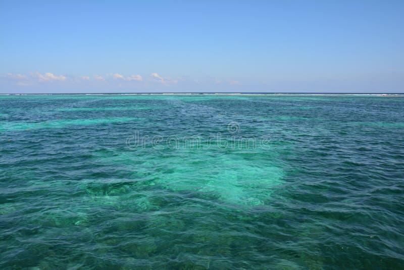Κοραλλιογενής ύφαλος στο νησί Μπελίζ καλαφατών Caye στοκ εικόνα