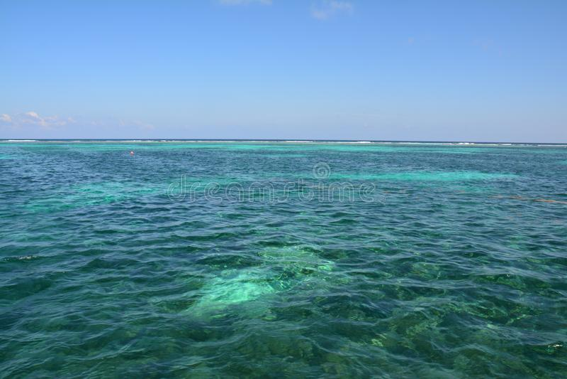 Κοραλλιογενής ύφαλος στο νησί Μπελίζ καλαφατών Caye στοκ εικόνες