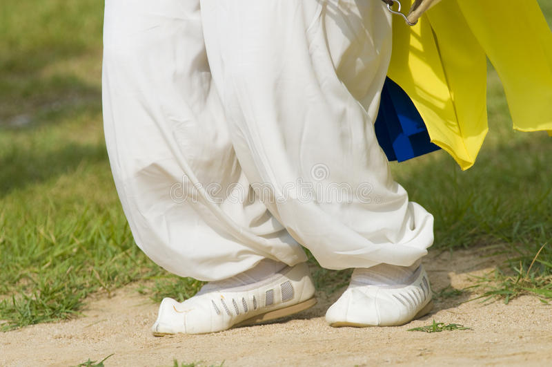 Download κορεατικά στοκ εικόνα. εικόνα από καλλιέργεια, παπούτσια - 13181565