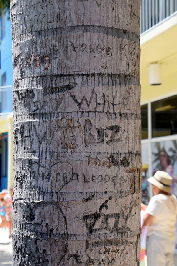 Κορμός δέντρων με τις αρχικές και γλυπτικές ημερομηνίας στοκ φωτογραφία με δικαίωμα ελεύθερης χρήσης