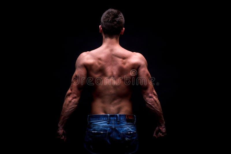 Κορμός του ελκυστικού αρσενικού σώματος στοκ φωτογραφία με δικαίωμα ελεύθερης χρήσης