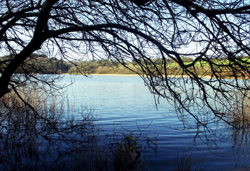 Κορνουάλλη, λίμνη Loe στοκ φωτογραφίες με δικαίωμα ελεύθερης χρήσης