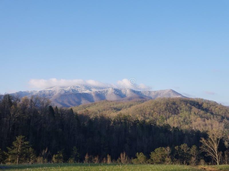 Κορυφές χιονιού στοκ εικόνες