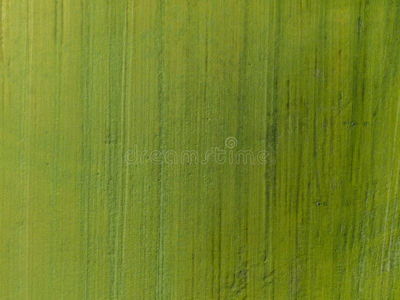 Κορυφή κάτω από την εναέρια άποψη ή πράσινος τομέας με την κάθετη σύσταση γραμμών στοκ φωτογραφία με δικαίωμα ελεύθερης χρήσης