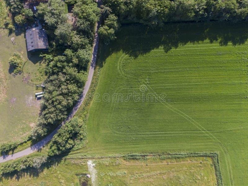 Κορυφή κάτω από την εναέρια άποψη του καλλιεργημένου πράσινου τομέα με τις διαδρομές τρακτέρ και τον κυρτό δρόμο στοκ εικόνες