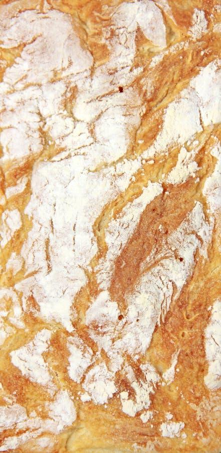 κορυφή ψωμιού στοκ εικόνες με δικαίωμα ελεύθερης χρήσης