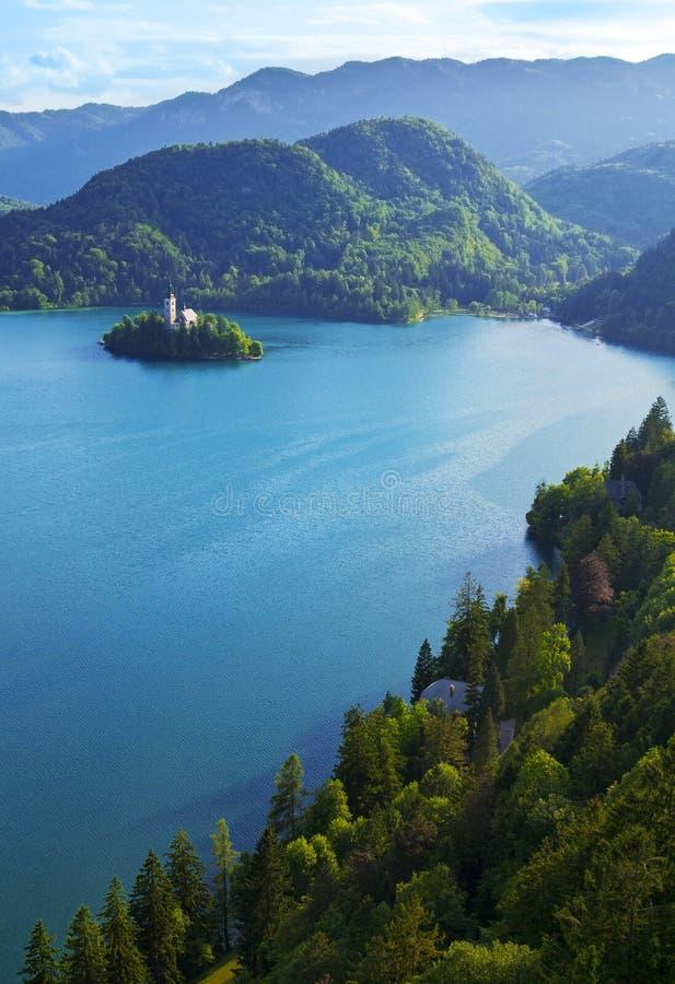 Κορυφαία όψη της αιμορραγημένης λίμνης στη Σλοβενία στοκ φωτογραφίες με δικαίωμα ελεύθερης χρήσης