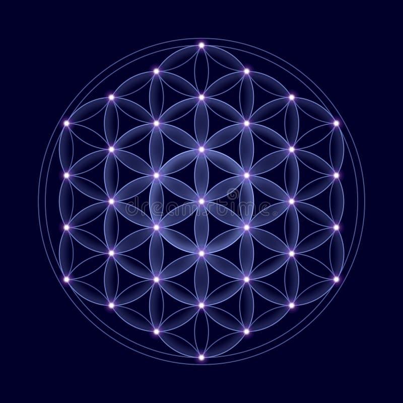 Κοσμικό λουλούδι της ζωής με τα αστέρια ελεύθερη απεικόνιση δικαιώματος