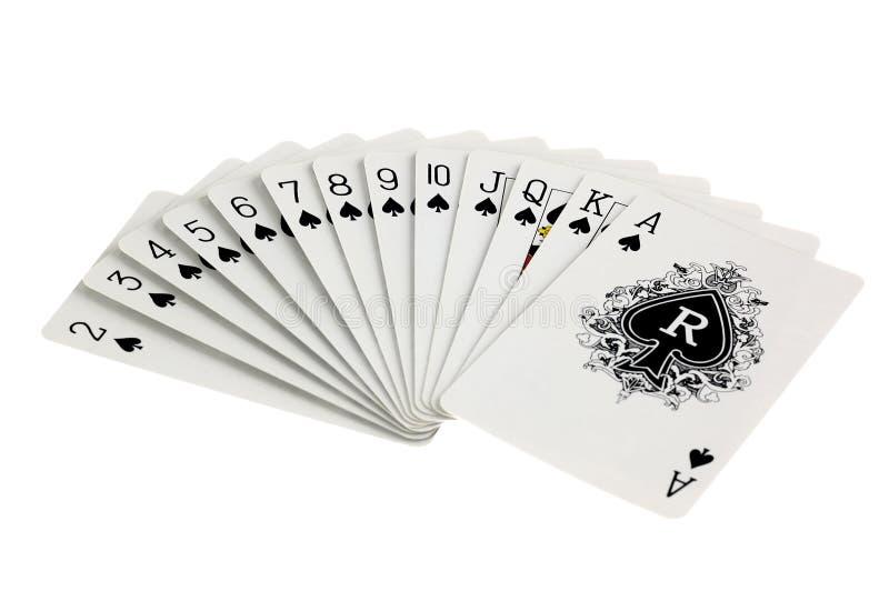 κοστούμι καρτών άσσων στοκ εικόνα