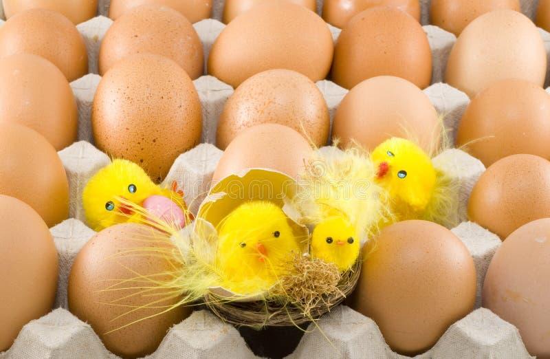 κοτόπουλα Πάσχα στοκ εικόνες