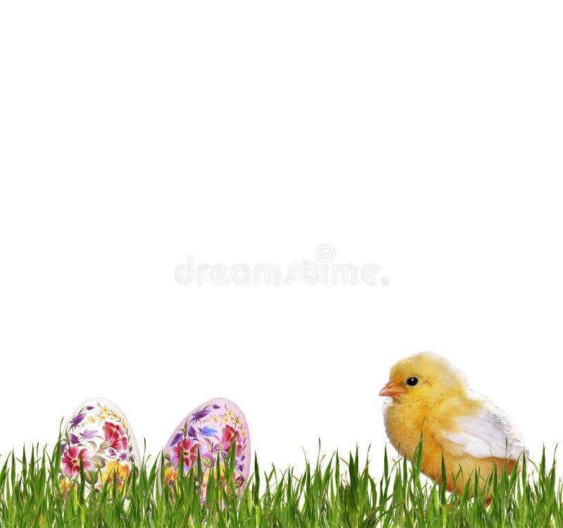 Κοτόπουλο και αυγά Πάσχας στοκ φωτογραφίες με δικαίωμα ελεύθερης χρήσης