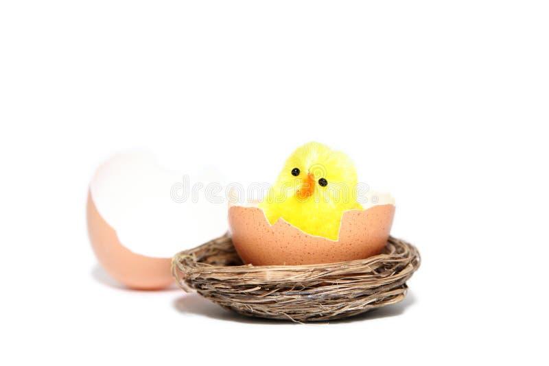 Κοτόπουλο Πάσχας στοκ φωτογραφία