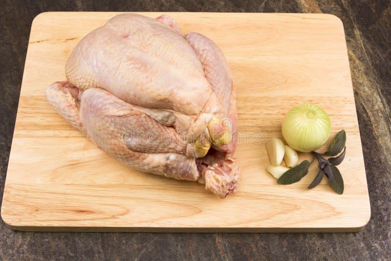 κοτόπουλο ακατέργαστο στοκ φωτογραφίες