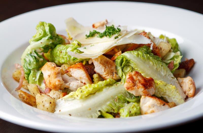 Κοτόπουλο και σαλάτα στοκ εικόνες