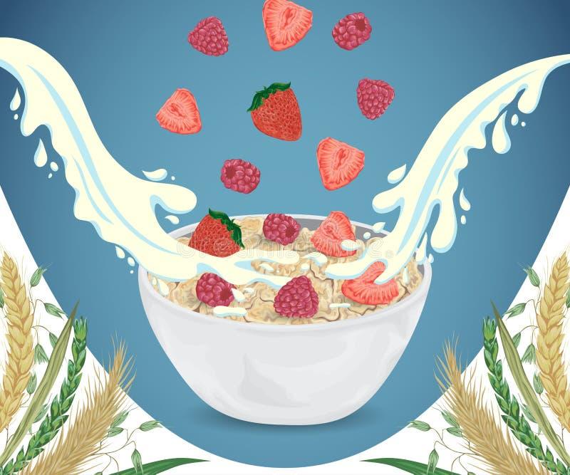 Κουάκερ δημητριακών στο κύπελλο με τους παφλασμούς, το σμέουρο, τη φράουλα και τα δημητριακά γάλακτος ελεύθερη απεικόνιση δικαιώματος