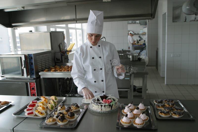 κουζίνα μαγείρων στοκ εικόνα