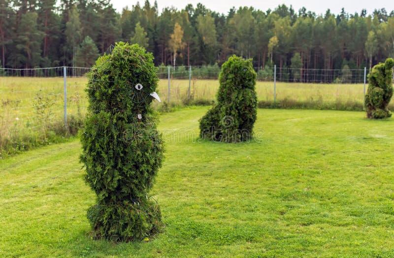 Κουκουβάγια και διαμορφωμένοι οι λιοντάρι Μπους σε έναν topiary κήπο στοκ φωτογραφία με δικαίωμα ελεύθερης χρήσης