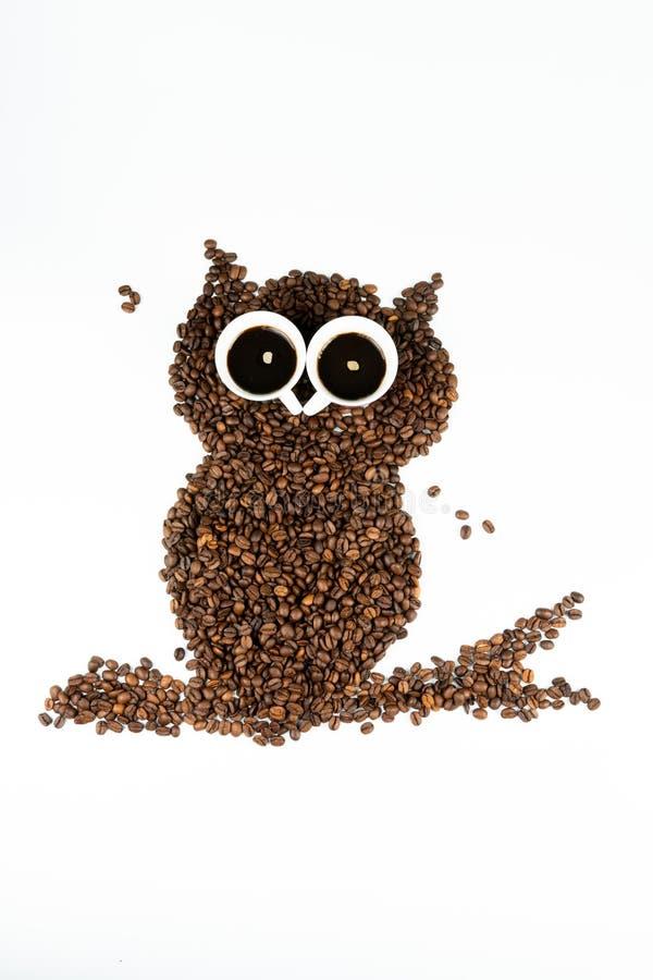 Κουκουβάγια καφέ στο άσπρο υπόβαθρο στοκ εικόνες με δικαίωμα ελεύθερης χρήσης