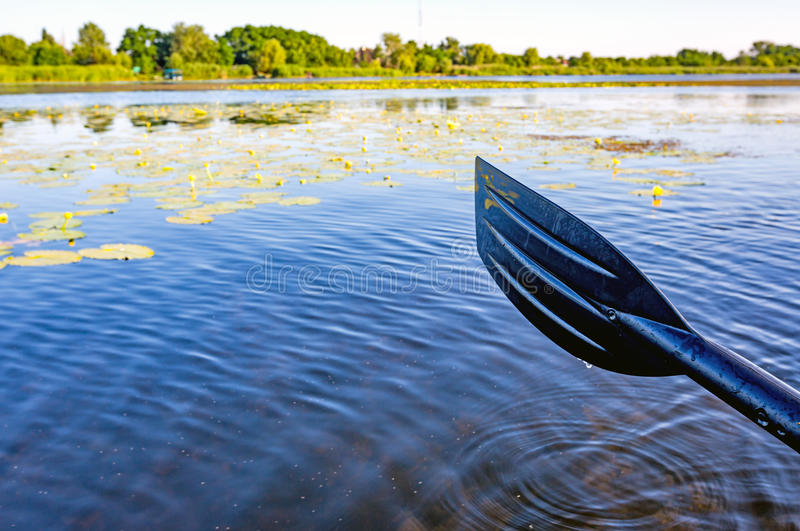 Κουπί πέρα από το νερό στοκ εικόνες με δικαίωμα ελεύθερης χρήσης