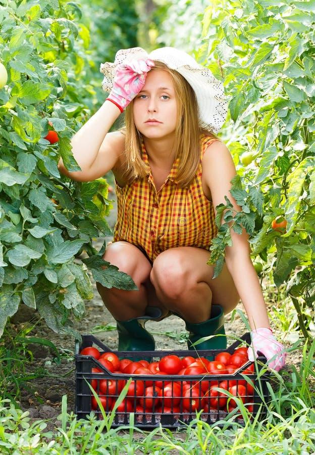 Κουρασμένος των εργασιών κηπουρικής στοκ εικόνες με δικαίωμα ελεύθερης χρήσης