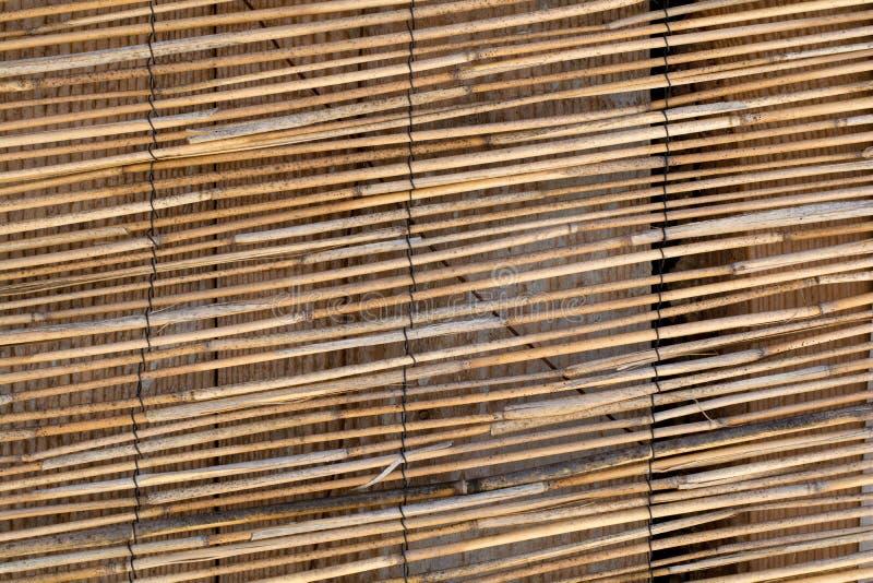 Κουρτίνα του κίτρινου καφετιού ραβδιού μπαμπού στοκ εικόνα