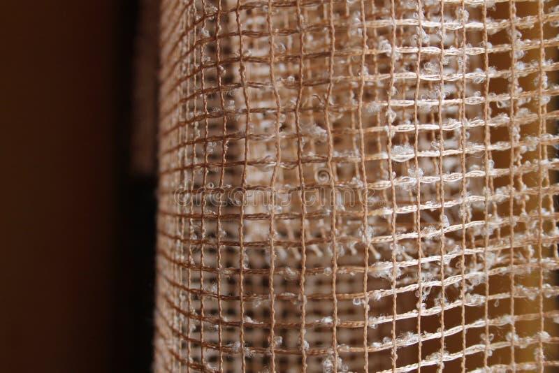 Κουρτίνα στοκ εικόνες με δικαίωμα ελεύθερης χρήσης