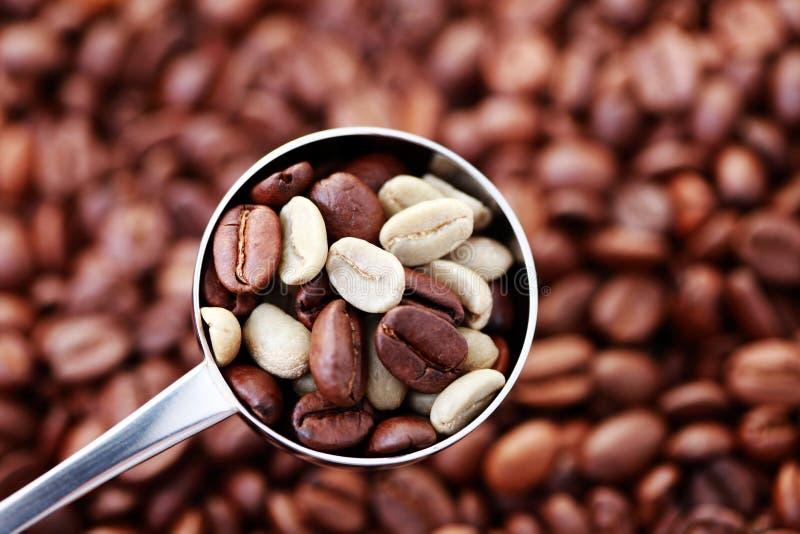 κουτάλι καφέ φασολιών στοκ εικόνα με δικαίωμα ελεύθερης χρήσης
